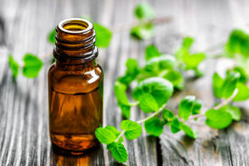 stock photo of mint leaf  - Mint oil in a bottle and fresh leaves - JPG