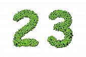 Duckweed Alphabet Letters - Number 2, 3 Isolated On White Background