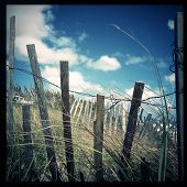 Instagram filtered image of an old wooden fence and sand dunes