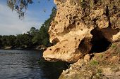 picture of suwannee river  - Limestone Formation along the Suwannee River - JPG