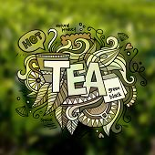 Tea hand lettering and doodles elements illustration
