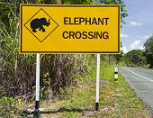 Caution: Elephants Crossing The Road Sign , Thailand
