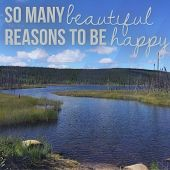 Inspirational Typographic Quote - So many beautiful reasons to be happy