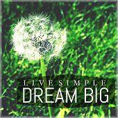 Inspirational Typographic Quote - Dream Big