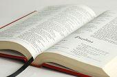 Una Biblia abierta se centró en la palabra Salmos