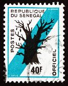 Postage Stamp Senegal 1975 Baobab Tree