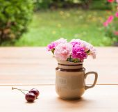 Pink Carnation Flowers In Small Ceramic Vase