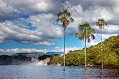 stock photo of tragic  - tropical palm trees in the middle of the lake shot on a bright day under tragic cloudy sky - JPG