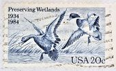 UNITED STATES OF AMERICA - CIRCA 1984: A Stamp printed in USA shows the Mallards Dropping In