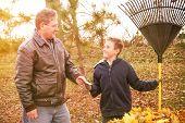 Boy earning money from raking leaves