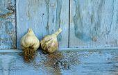 Two organic garlic bulbs