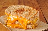 stock photo of whole-wheat  - A grilled cheese sandwich on whole wheat bread - JPG