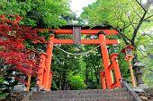 Gate To Stairway Of Chureito Pagoda, Arakura Sengen Shrine In Japan
