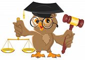 stock photo of owls  - Owl Judge holding gavel and scales - JPG