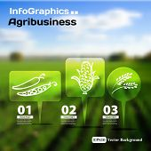 Set Of Infographics With Blurry Photographic Background On The Topic Of Agriculture