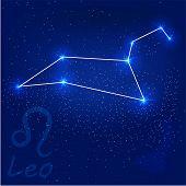Constellationleo