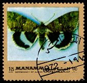 Vintage  Postage Stamp. Butterfly Catocala Fraximi.