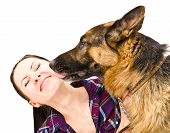 stock photo of licking  - Portrait of a smiling young woman who licks German Shepherd - JPG