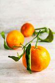Three Ripe Clemetine Mandarines With Leaves. Indoors Close-up.