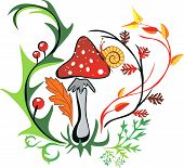 Picture With Amanita With Snail Surrounded By Colorful Leaves.eps
