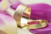 Two Stylish Textured Gold Wedding Rings