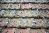 Roof with moss and ice
