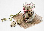 Quail Eggs With Willow Branch
