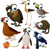set of cute comic animals: birds: grouse, avocet, kiwi, umbrella bird, quail, penguin and vulture