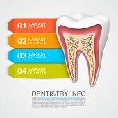 Dentistry info medical art
