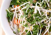foto of bean sprouts  - vietnamese pho soup an ethnic meal of chicken soup broth bean sprouts noodles and basil or cilantro floating on top - JPG