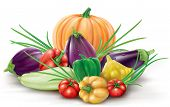 foto of gourds  - Group of different colorful fruits gourd vegetables - JPG