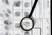 image of fingerprint  - Fingerprint on police fingerprint card and black background - JPG