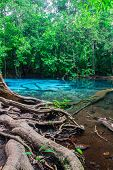 picture of emerald  - Emerald Pool is unseen pool at Krabi in Thailand.