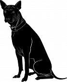foto of mammal  - mammal animal pedigreed pet dog vector black - JPG