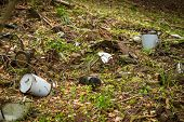 stock photo of dump  - illegal garbage dump in the middle of the forest - JPG