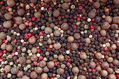 foto of peppercorns  - Mixed peppercorns  - JPG