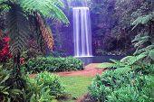 Millaa Millaa Falls - Australien