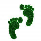 Green grass eco carbon footprint