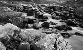 Welsh Stream In Black And White