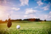 White golf ball on a green grass. Golf course. Summer activities. poster