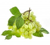 fresh grape  isolated on white