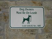 Dog And Dog Owners On Leash!