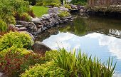 stock photo of ponds  - Beautiful pond with exotic fish in the garden - JPG