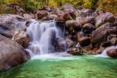 River Stone And Waterfall, View Water River Tree, Stone River In Multi Color Tree Leaf In Forest poster
