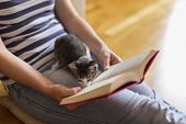 Woman Cuddling Kitten And Reading A Book poster