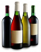 Quatro garrafas de vinho de diferentes tipos sobre o fundo branco.