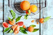 Tangerines (oranges, Mandarins, Clementines, Citrus Fruits) With Leaves In Basket On A Mint (blue) B poster
