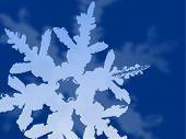 Dark Blue Snowflake Background
