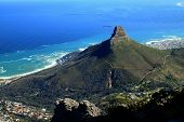 picture of mountain lion  - Lions Head and Cape Town, South Africa, as seen from the top of Table Mountain.
