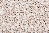 Dry Pale Pebbles Background, Simplicity, Daylight, Stones. poster